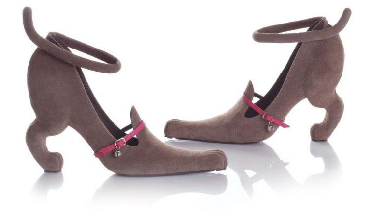 kobi levi obuv boty miao